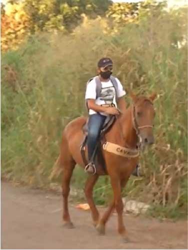 Estudante percorre 2 km montado em égua para pegar atividades da escola. - Foto: reprodução