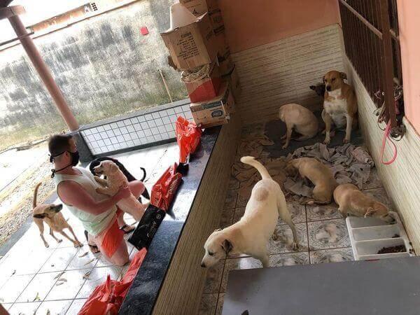 Médico troca atendimento por ração para ajudar animais abandonados. - Foto: arquivo pessoal