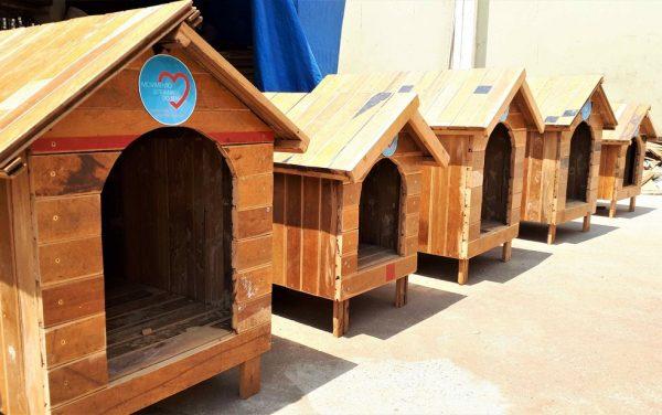 Casinhas de cachorro produzidas por detentos do CDP de Serra Azul (SP) serão doadas a ONGs — Foto: SAP/Divulgação