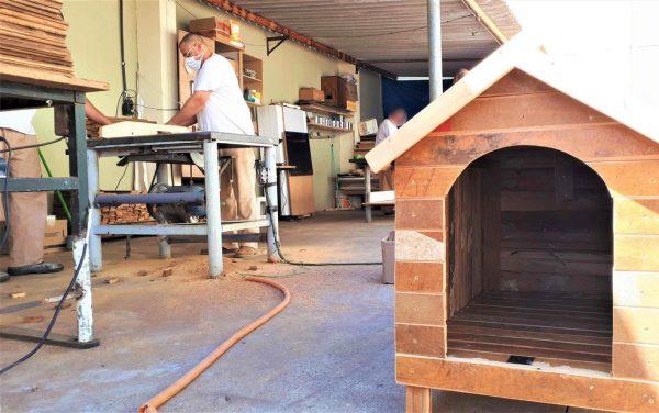 Detentos produzem casinhas de cachorro para doação no CDP de Serra Azul (SP) — Foto: SAP/Divulgação