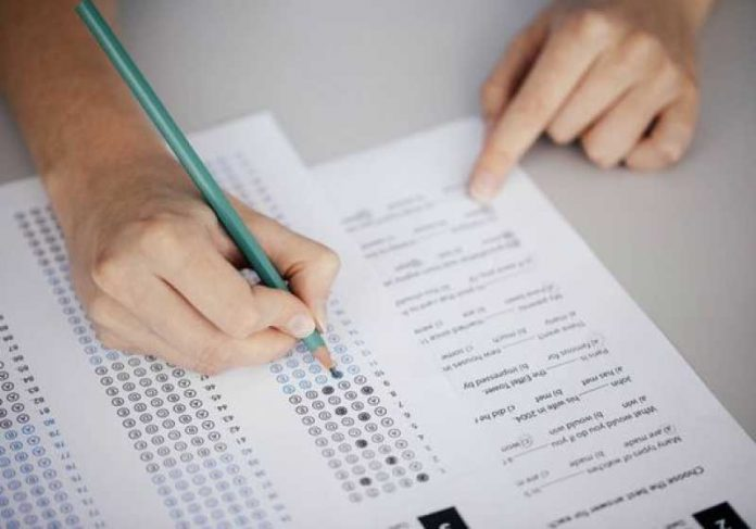 Concursos públicos abertos têm vagas para todos os níveis de escolaridade. - Foto: reprodução