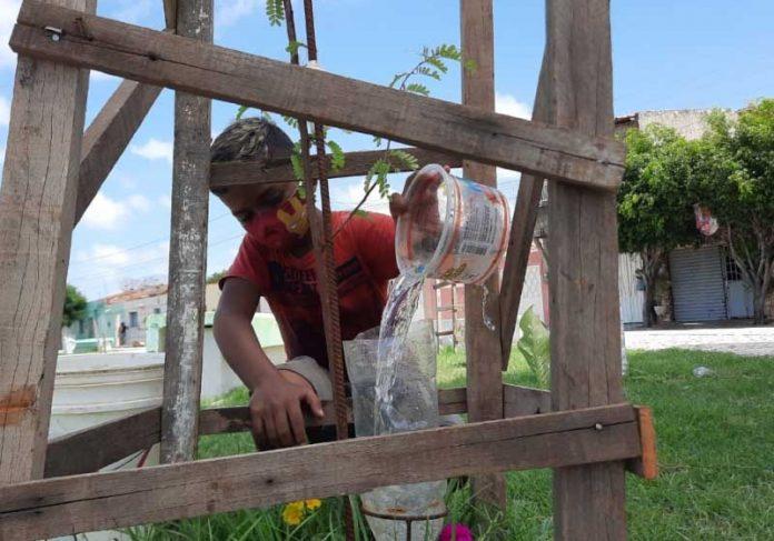 Emerson sonha em ver a cidade que mora mais arborizada. Ele plantou 30 árvores em um mês. - Foto: Wanderbeg Belém