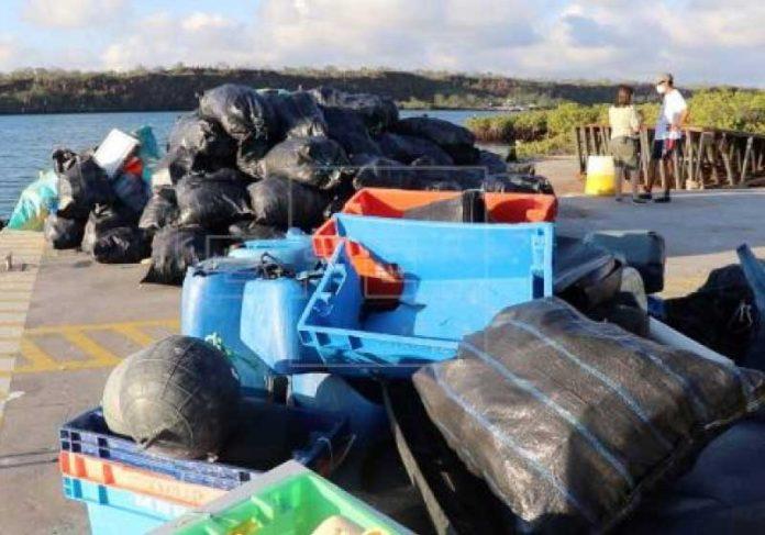 As duas ações para retirada do lixo das ilhas Galápagos movimentaram ambientalistas de todas as idades - Foto: EFE