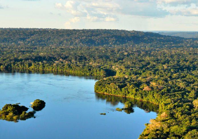 O programa Adote um Parque é uma iniciativa do Ministério do Meio Ambiente. - Foto: ICMbio