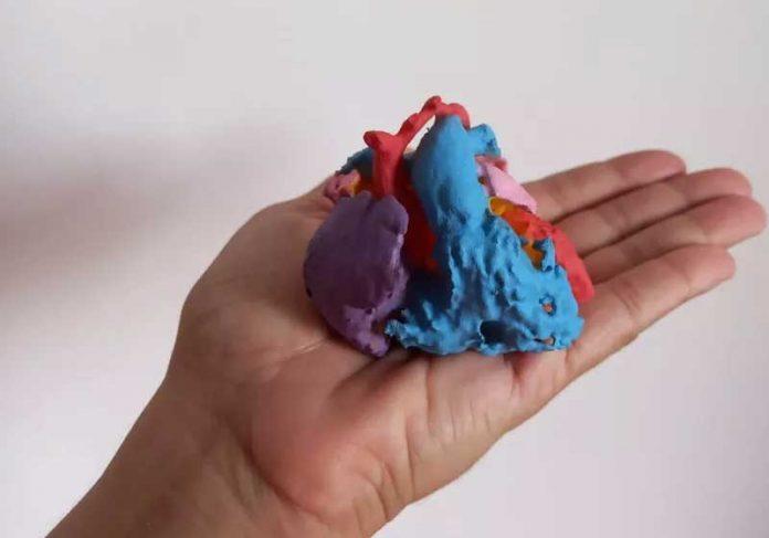 O coração impresso em 3D tinha todos os detalhes para que a cirurgia fosse um sucesso. - Foto: arquivo pessoal
