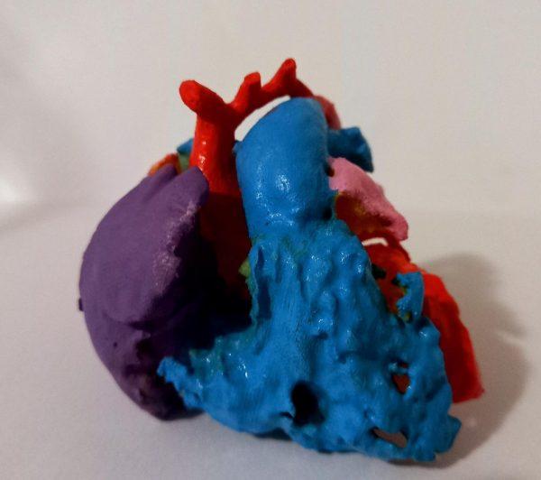 Coração preciso, impresso em 3D - Foto: arquivo pessoal