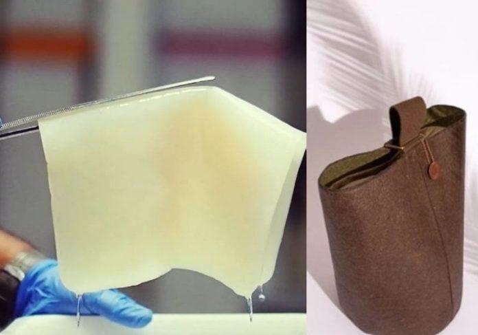 Couro vegano feito de água de coco - Fotos: Malai Biomaterials Design Pvt Ltd