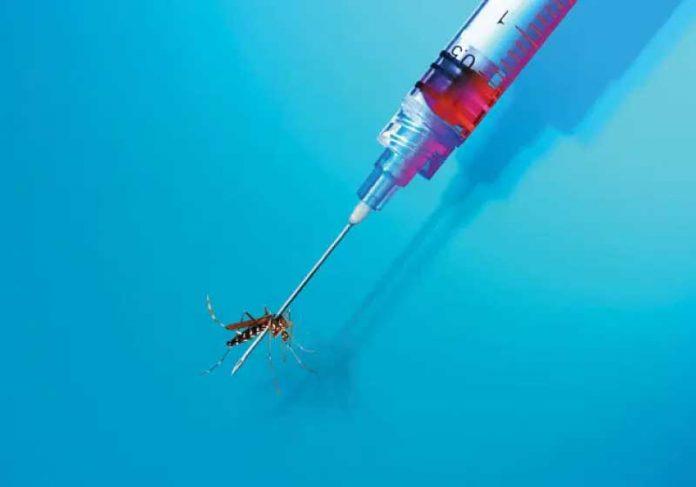 A modificação genética no vírus da malária evitará nossas epidemias. - Foto: reprodução Veja