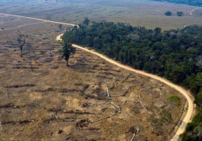 Proteção de áreas naturais avançou devido ações das metas AICHI. - Foto: CARLOS FABAL / AFP