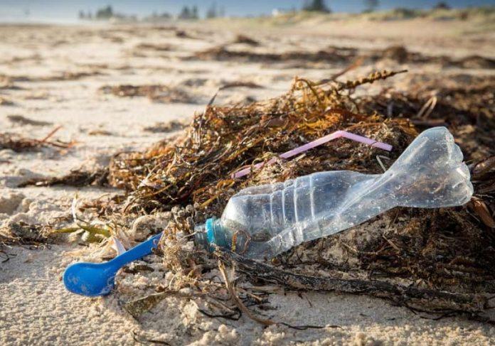 O plástico descartável não poderá mais ser descartado em lixo comum. - Foto: Pixabay