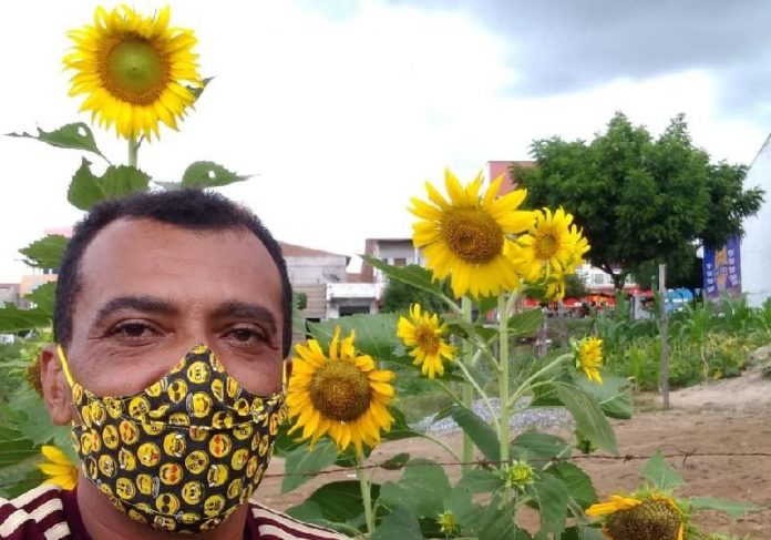 O homem que plantou 500 pés de girassóis no CE para homenagear a amada - Foto: Arquivo pessoal