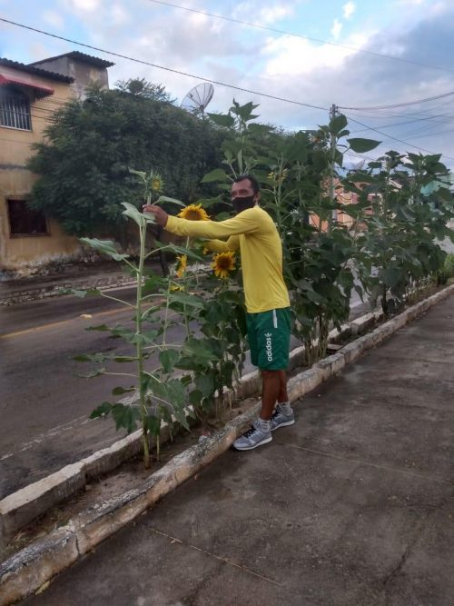 João em uma das plantações no meio da rua - Foto: arquivo pessoal