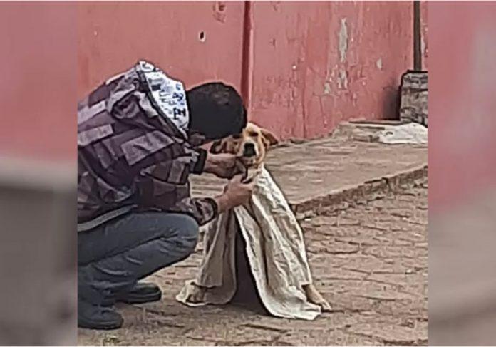 O jovem agasalhou o cão que tremia de frio. A foto foi registrada por uma moradora. - Foto: arquivo pessoal