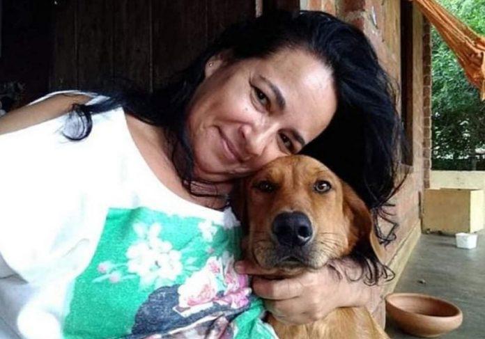 Cão percorreu 40 km do lar temporário até a casa de tutora. - Foto: arquivo pessoal