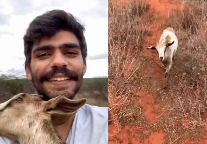Felipe Oliveira leva no colo a cabritinha cega perdida - Fotos: reprodução / Instagram
