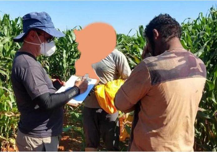 Os trabalhadores encontrados viviam em condições análoga a escravidão - foto: reprodução