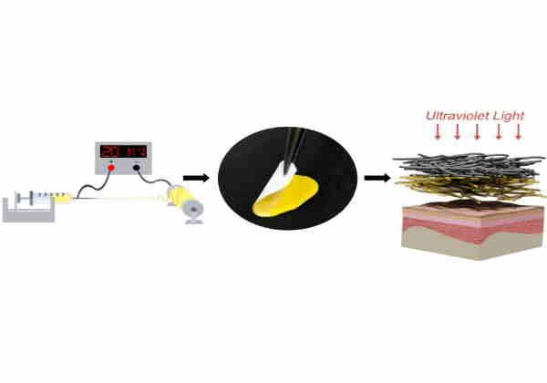 Material com biotecnologia e nanotecnologia possibilita a liberação lenta do princípio ativo medicinal e poderá ser usado para tratar queimaduras, úlceras e outras afecções cutâneas. Foto: Embrapa