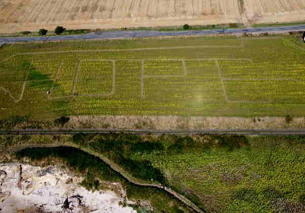 Pollock da Fazenda Ardross em Fife esculpiu a palavra 'esperança' em seu campo Foto: Igreja da Escócia / PA