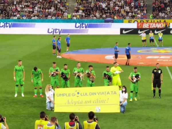 Jogadores carregando cães abandonados no estádio - Foto: reprodução / Facebook