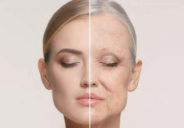 O teste brasileiro que aponta a idade biológica de uma pessoa é importante para influenciar nossa qualidade de vida - Foto: Pixabay