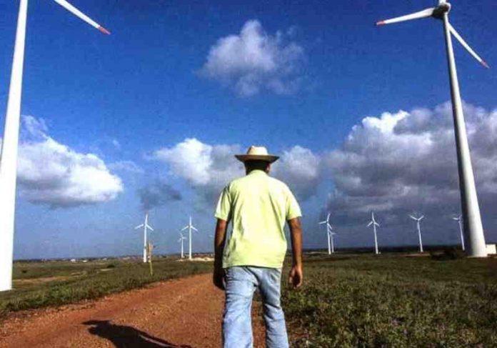 A energia eólica produzida no RN é fonte renovável mais barata e limpa Foto: Divulgação
