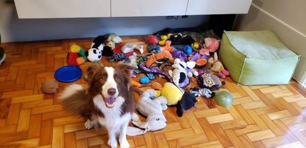 Gaia e alguns brinquedos trabalhados na pesquisa - Foto: Shany Dror