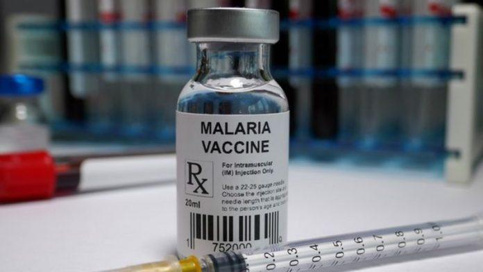 A vacina contra malária recém-aprovada é estudada desde os anos 1980 - Foto: Getty Images